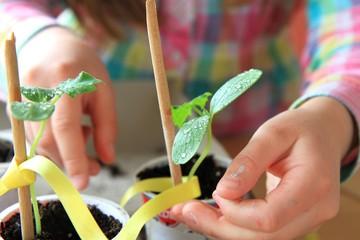 bimba a occuparsi delle piante