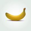 Vector banana