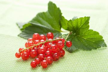 fresh redcurrant