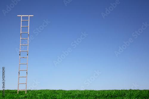 Leiter auf der Wiese