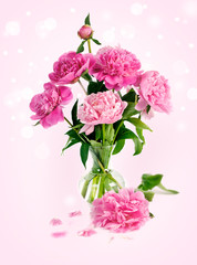 pink peony in glass vase