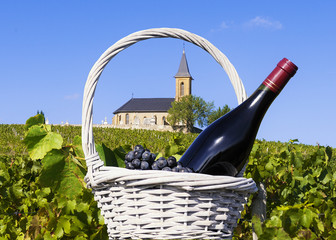 French country and vineyards