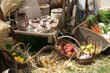 cart and baskets with seasonal fruit and vegetables for sale at