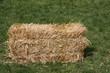 block dry straw cube deposed on green lawn