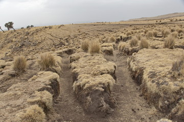 Soil erosion in the Simien Mountains national park, Ethiopia.