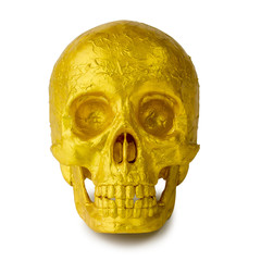 Human skull painted gold