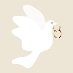 ehering, taube, heirat, heiraten, ehe, gold,  friedenstaube,