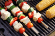 Food: Vegetarian Barbecue, vegetables and tofu kebabs