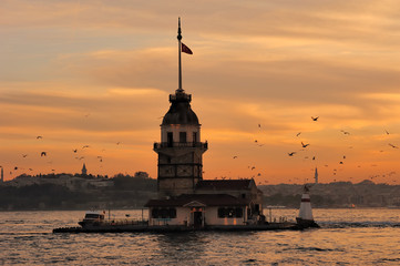 Leandre Tower-Kız Kulesi-Maiden's Tower-Seagulls-Istanbul-Turkey