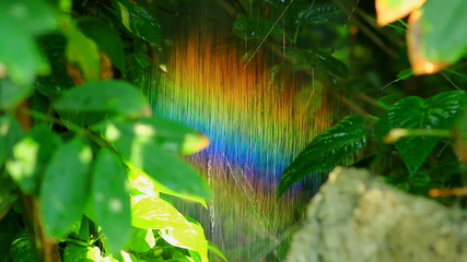 Rainbow in nature