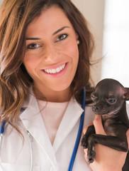 Female Doctor Holding Chihuahua Dog