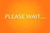 Please Wait Screen