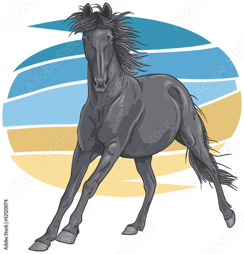 Black galloping horse illustration