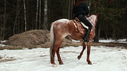 Cowboy woman climbs on a horse in winter