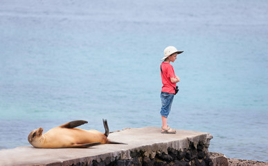 Sea lion and boy