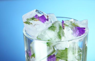 Ice cubes with flowers and herbs in glass, on blue background
