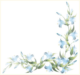 Greeting card with a lily. Lily illustration.  Decorative framew