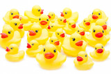 Rubber duck - 52130440