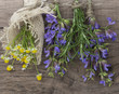 herbs and flowers on wooden background
