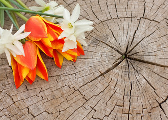 Bunch of bright flowers on wooden background