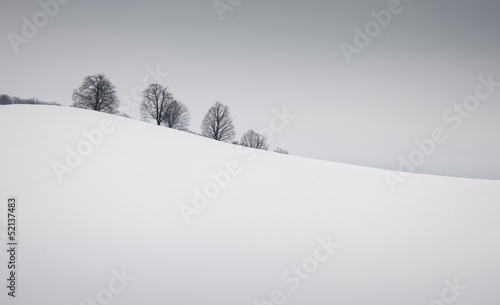 simple winter landscape with snow and trees - 52137483