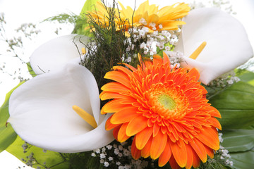 Bright bouquet, close-up. Calla and Gerbera flowers