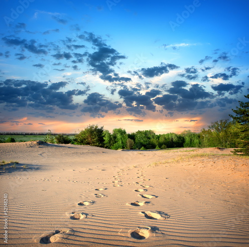 Footprints in the sand - 52148240