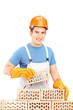 Male manual worker building a brick wall