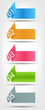Concept of colorful origami for different business design. Vect