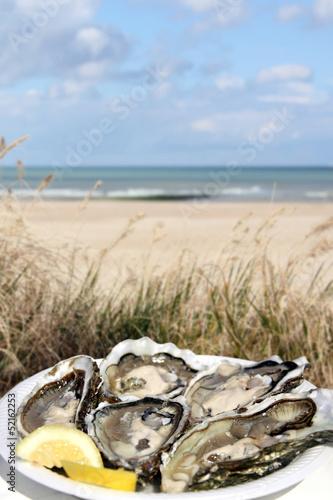 frische austern am strand - 52162253