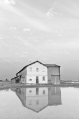 Lomellina-farmhouse in a paddy field B&W image