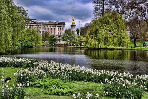 Buckingham Palace - 52164441