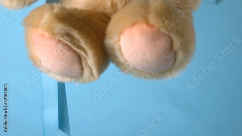 Teddy bear falling on blue background close up