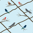 Vector seamless Birds Background