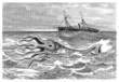 Giant Calamari - Calmar Géant