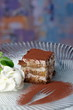Tiramisu - Classical Dessert with Mascarpone and Coffee