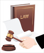 Gavel in hand and law book. Photo-realistic vector