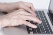 canvas print picture - Hände einer älteren Frau tippen auf der Tastatur eines Laptops