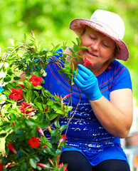 smiling woman gardener enjoying dipladenia plant in garden