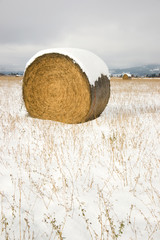Snow Field Farmer's Pasture Hay Straw Bales