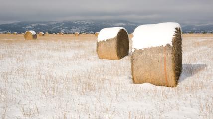 Snow Farmer's Field Hay Straw Bales