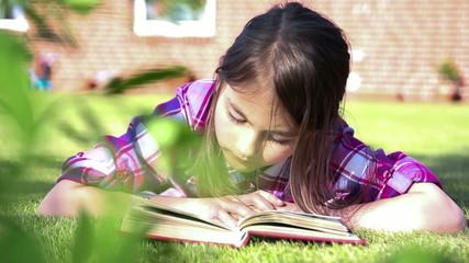 Little girl reading a book in summer on grass.