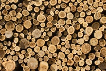 Apilamiento de troncos aserrados