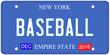 Baseball New York License Plate