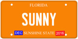 Sunny Florida License Plate