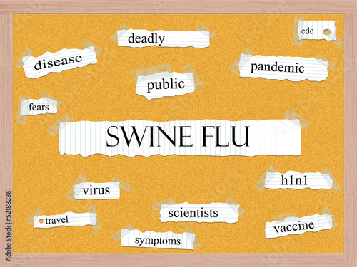 Swine Flu Corkboard Word Concept