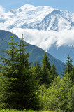 Mont Blanc mountain massif (view from Plaine Joux outskirts) poster