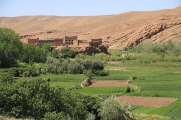 vallée des roses, maroc