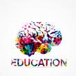 cerveau, éducation,vecteur