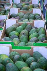 Boxes with avocado.